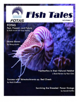 FOTAS_Fish_Tales_4.1