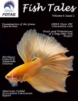 FOTAS_Fish_Tales_6.2