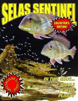SELAS_Sentinel_1.1